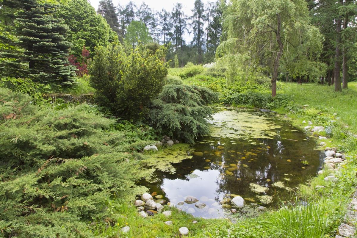 arboretum Liptovsky Hradok