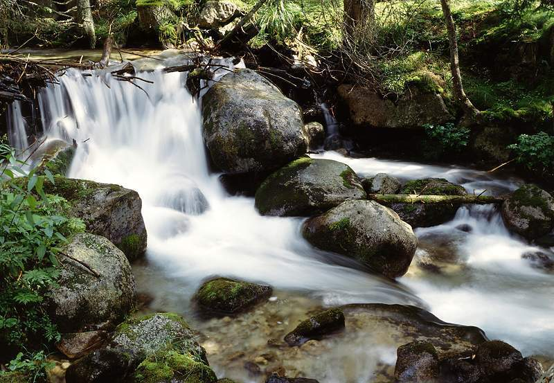 Ústie Račkovej doliny – Jakubiná - Ústie Račkovej doliny
