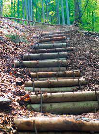 """Cestou k Jeleniemu vodopádu treba prekonať """"schodopád"""" v podobe 84 spevnených schodov."""