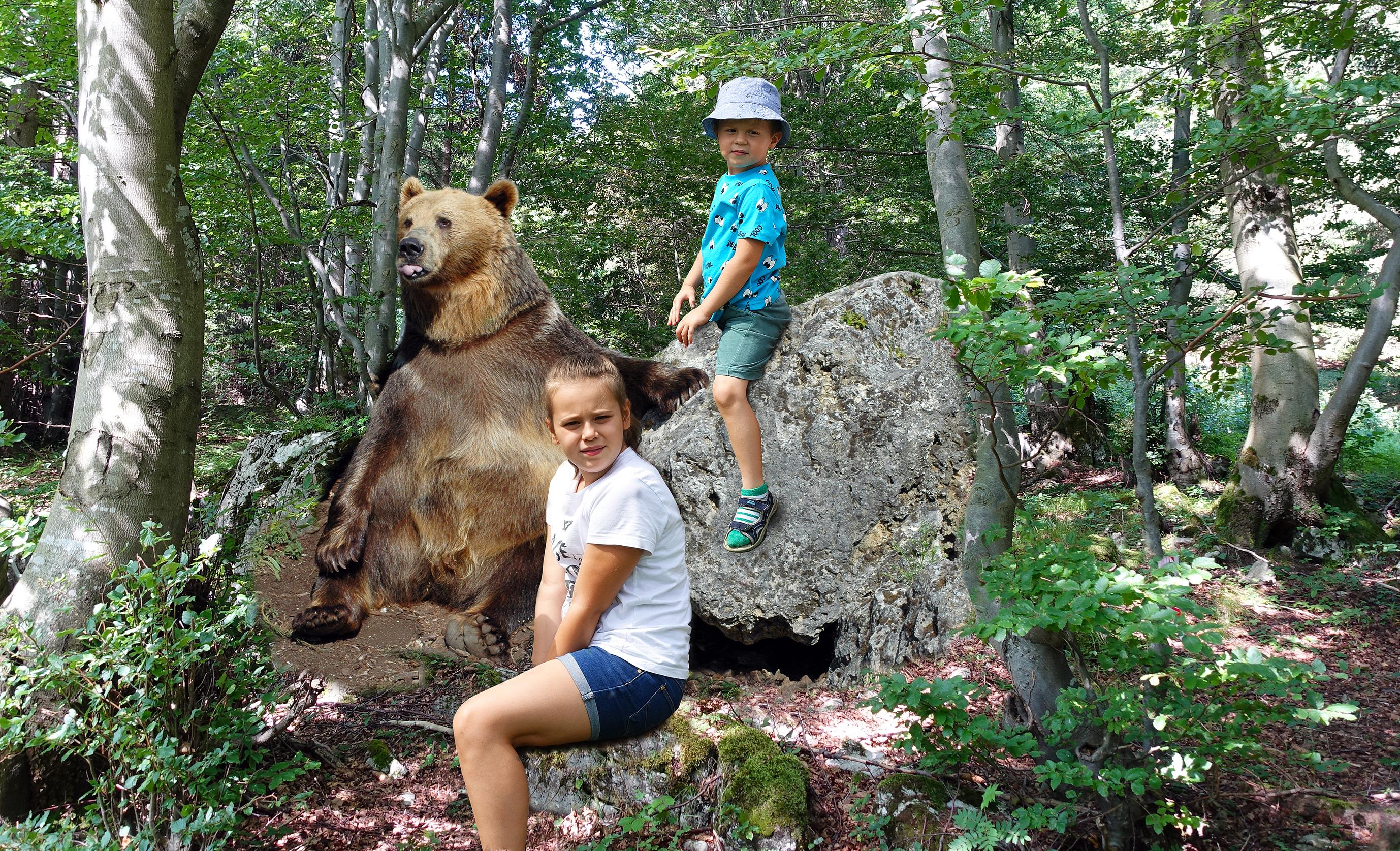 Medvedia cesta